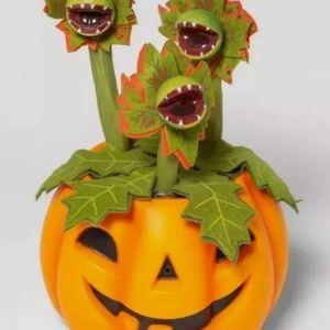 Halloween Pumpkin w Animated Dancing/Singing Vines